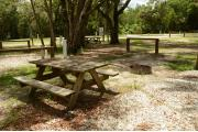 This view shows the wooden picnic table is center bottom. The wooded site looks out to a paved front road. A black SUV two white travel trailers, Cabbage Palms, Royal Palms and Oak trees are in the distance and across the road. An Oak tree is front center.