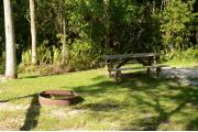 A wooden table is at the bottom. A site maker is to the right, oak trees at the paved front road. This site is shaded by Oak trees and Cabbage Palms. The area is heavily treed. Green vegetation is in the distance at opposing campsites.
