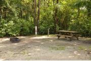 This is a view of a brown ground grill, gray electrical box, water spigot and a wooden picnic table. The soil is sandy with sparse green grass. Green palms surround the site. Tree roots are around the picnic area.