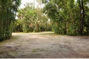This view from the back of the site shows a paved front road, sandy soil with sparse green grass and partial view into two opposing camp sites. Cabbage Palms shade this site. Tree roots are visible near the back of the camp site.