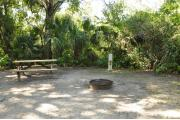 This view shows the wooden picnic table, brown ground grill, gray electrical box and water spigot. The soil is sandy with sparse green grass. Green vegetation, Palms and Oak trees give this site partial shade.