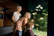 Photo: JOHN PENNEKAMP CORAL REEF SP. Woman with gray hair, young girl with long blonde hair and younger boy with auburn hair look with delighted and interested faces at many colorful fish in large saltwater aquarium with white sand and artificial brown coral with dark wooden walls and other displays in Park's Visitor Center