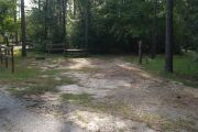 Campsite with picnic table and lush vegetation buffer to other campsites.