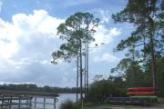 This is a wonderful view of Faver-Dykes State Park's boat launch.  Kayak and canoes are available for reservation at the Ranger Station 365 days a year.  Pellicer Creek is a State Canoe Trail and Outstanding Florida Waterway.