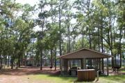 This is a photo of the large picnic area at Faver-Dykes State Park.  There are two pavilions that are both available for reservation.  The picnic area looks over Pellicer Creek.  There are bathroom facilities, electricity outlets, and a nice playground for children.
