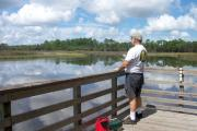 The pavilion area at Faver-Dykes State Park has a large fishing and observation dock on the banks of Pellicer Creek.  Try catching a fish here or take a picture of the beautiful scenery.