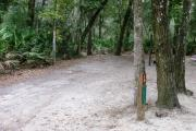 This campsite is surrounded by oak trees, cabbage palms, and pines that provide ample shade on sunny Florida days. There is vegetation providing a boundary from neighboring sites.