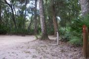 This campsite is surrounded by oak trees, cabbage palms, and pines that provide ample shade on hot Florida days. There is vegetation providing a boundary from neighboring sites.