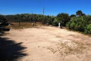 Packed sand campsite with palmetto plants and scrub buffer at the back. Palmetto plants border each side for privacy. Electric and water on right.