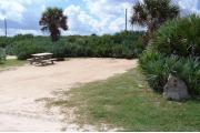 Packed sand campsite with palmetto plants and scrub buffer at the back. Picnic table and grill on left side. Small palm tree visible. Low brush on left side.