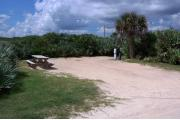 Packed sand campsite with palmetto plants and scrub buffer at the back and along right side for privacy. Electric and water on right side.