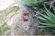 Large rock with metal sign with campsite number 10 on it located to the right of the site. Vegetation behind it.