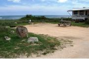 Packed sand campsite with low palmetto plants and sea oats along the back.  The ocean is visible. Ground cover borders the right side. Electric and water hookups located to the right. Picnic table is on the right of the site and ground grill is located at the back of site.
