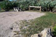 Packed sand campsite with palmetto plants along the back providing a buffer. Barricade posts at back to protect vegetation. Low vegetation between site to the left. Picnic table and ground grill to the left. Electric and water hookups on right.