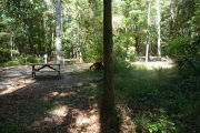 Picnic table at back of site surrounded by trees.