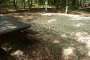Shaded campsite with picnic table.