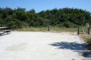 Picture of open sunny campsite with beach dune and coastal vegetation