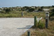 Picture of campsite with water and electric hookup backing up to the coastal vegetation and beach dune