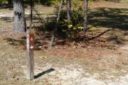 Close up of a brown site marker with an arrow on a brown post. There is sparse vegetation in the foreground. Just behind the site marker is a group of small trees and to the left of the marker is a medium sized tree.