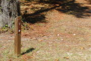 Close up of a brown campsite marker on a wooden post with grass in the foreground and a large tree behind the post.