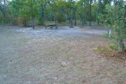 View of a vacant campsite with a fire ring, picnic table, electric pedestal, and a water spigot. The main part of the site is grassy and well shaded. There are several trees on the back edge of the site.
