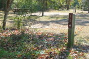 View of a vacant site with a brown site marker a wooden post. The site is grassy with some patches of sand. There is a fire ring, picnic table, electric pedestal, and a water spigot. The site has partial shade and a few small trees in the center of the site.