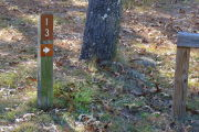 Close up of a brown site marker with an arrow on a wooden post. There is grass around the post and a tree to the right of the post.