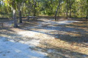 View of a vacant site with a picnic table and a fire ring. The main part of the site is sand with sparse vegetation. There is a medium tree in the middle of the site and a few other small trees. The site is well shaded.