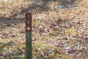 Close up of a brown site marker with an arrow on a wooden post. The marker is surrounded by grass.