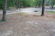 View of a vacant campsite with a picnic table and fire ring. The main part of the site is sandy and there are three trees in the site. Trees are present all around which create a canopy and partly shade. An electric pedestal and a water spigot are present in the background.