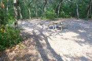 View of a vacant campsite with a picnic table and fire ring. The main part of the site is sandy and is surrounded by arching trees creating a canopy and complete shade.