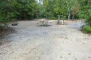View of a vacant campsite with a picnic table, fire ring, electric pedestal, and water spigot. The main part of the site is sandy. There are several trees surrounding the site and it is partly shaded. A medium size tree is located in the middle of the site.