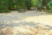 View of a vacant campsite with a picnic table, fire ring, electric pedestal, and water spigot. The site is sandy with some sparse vegetation and has trees all around. There is partial shade. In the background there is a path exiting the site.