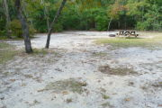 View of a vacant campsite with a picnic table and a fire ring. The majority of the site is sand but there are a few patches of grass. Two small trees are located within the site and the back of the site is densely forested.