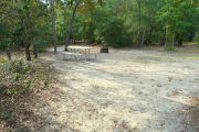 View of a vacant campsite with a picnic table and fire ring. The main part of the site is sandy with some grass around the edges. A few small trees are present within the site. The site is lined with trees and the back of the site is densely forested.