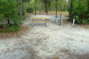 View of a vacant campsite with a picnic table, fire ring, electric pedestal, and water spigot. The site is sandy with a mix of leaves and pine needles. Several small bushes and tress are on the edges of the site and there are multiple trees spread out in the background.