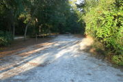 View of a vacant campsite with a picnic table, fire ring, electric pedestal, and water spigot. The main part of the site is sandy with some grass around the edges. Trees and bushes line the site and there is partial shade.