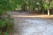 View of a vacant campsite with a picnic table and fire ring. The main part of the site is sandy. Trees are present on all edges and two large trees are located at the back of the site. There is partial shaded.