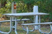 Close up of a picnic table with a site marker and an electric pedestal. There is grass in the foreground and bushes in the background.