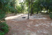 View of a vacant campsite with a picnic table, fire ring, and water spigot (this site does not have electricity). The site is sandy with some patches of grass. There are some bushes on the back edge of the site and a couple small trees in the site. The site is fully shaded.