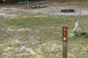 Close up of a brown site marker with an arrow on a wooden post. There is grass in the foreground and a fire ring and picnic table in the background.