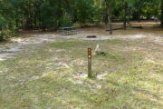 View of a vacant campsite with a picnic table and fire ring (this site does not have electricity). The main part of the site is grass with some sandy patches. There are a couple of small trees within the site and trees all around the edges. This site has partial shade.