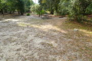 View of a vacant campsite with a picnic table and fire ring (this site does not have electricity). The main part of the site is sandy with patches of grass. There are trees spread around the edges of the site and there is partial shade.