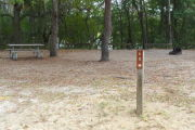 View of a vacant campsite with a brown site marker on a wooden post. This site has a picnic table, fire ring, electric pedestal, and water spigot. There are two large trees in the site creating partial shade and trees on the back edge.