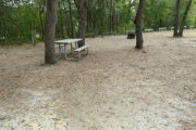 View of a vacant campsite with a picnic table, fire ring, electric pedestal, and water spigot. There are two large trees in the site creating partial shade and trees on the back edge. The main part of the campsite is sand.