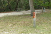 Close up of a brown site marker with an arrow on a wooden post. There is grass in the foreground and a picnic table, fire ring, and electric pedestal are in the background. There is a large tree directly behind the marker.