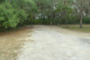 View of a vacant campsite with a picnic table, fire ring, electric pedestal, and water spigot. The main part of the site is sand with a large area of grass to the right. There are two trees within the site and the back of the site is densely forested creating partial shade.
