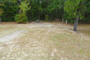 View of a vacant campsite with a picnic table, fire ring, and electric pedestal. The main part of the site is sand with large areas of grass. There is a large tree on the right side of site and a large bush on the left. The back of the site is densely forested creating partial shade.