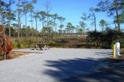 Side view of site with electric, water to the right, picnic table and fire ring on the left. Site is surrounded by salt water marsh and other native plants and trees.