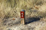 Campsite wood post with #44 metal sign surrounded by native grass.